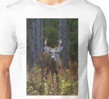 Curious Prince - White-tailed Buck Unisex T-Shirt