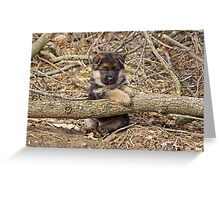 Puppy and Log Greeting Card