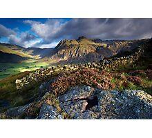 Rocks and Heather Photographic Print