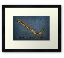 Navy Jack Snake - Dont Tread on Me Framed Print