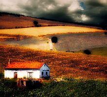 Italian Countryside 3 by Anthony Giampaolo