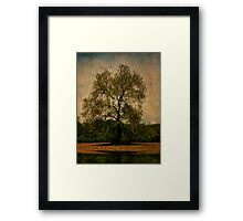 Alone With a Tree Framed Print
