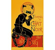 Black Cat and the Ladybug Photographic Print