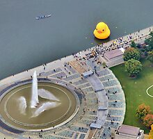 Large Rubber Ducky in Pittsburgh - 2013 by shutterrudder