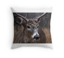 Light from Above - White-tailed deer Throw Pillow
