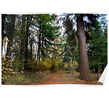Oregon Driveway Poster