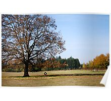 Tire Swing in Oregon Countryside Poster