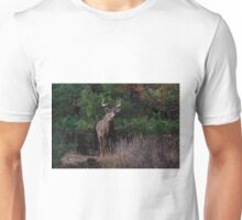The King is Dead...Long Live the King - White-tailed Deer Unisex T-Shirt