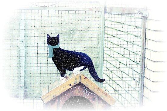Kitten Christmas by Ladymoose