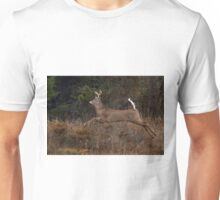 Early Morning Buck 2 - White-tailed Deer Unisex T-Shirt