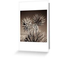 mojave desert palms Greeting Card