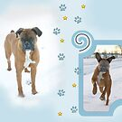 Boxer Dog Winter Fun by SpiceTree