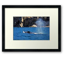 Humpback Whale Spout  Framed Print