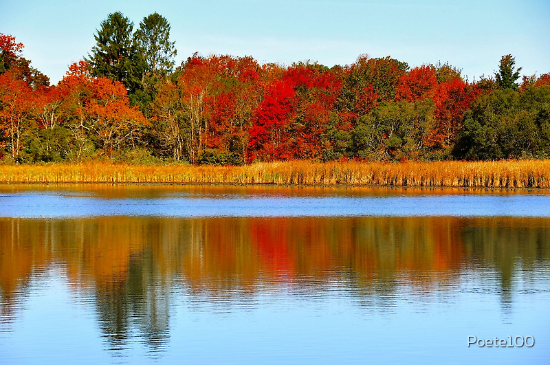Fall Reflections by Poete100