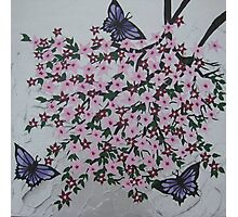 purple butterflies with pink flowers Photographic Print