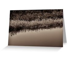 water & grass Greeting Card