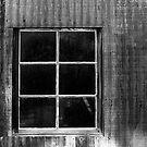 Wild West Window by James2001