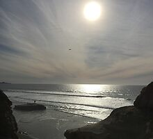 Torrey Pines State Natural Reserve by Kimberly Palmer