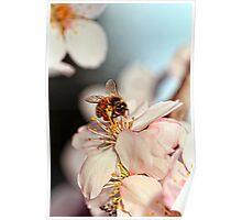 """""""Bee-utiful"""" Poster"""