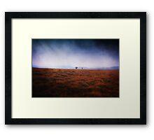 Explorers Framed Print
