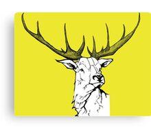 Wildlife Portrait Canvas Print