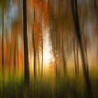 Another autumn dream by Ursula Rodgers Photography