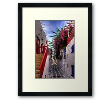 Flowers in a Mykonos Lane Framed Print