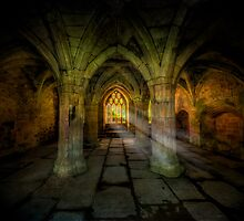 Abbey Sunlight by Adrian Evans