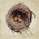 Yoshi Eggs by Eric Fan
