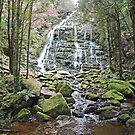 Nelson Falls, Tasmania by Margaret  Hyde