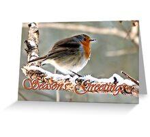 Robin's Greeting Greeting Card