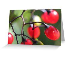 Berries 2 Greeting Card