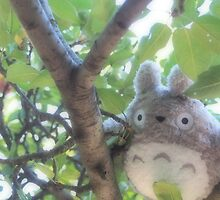 Totoro  by Allie Hunter