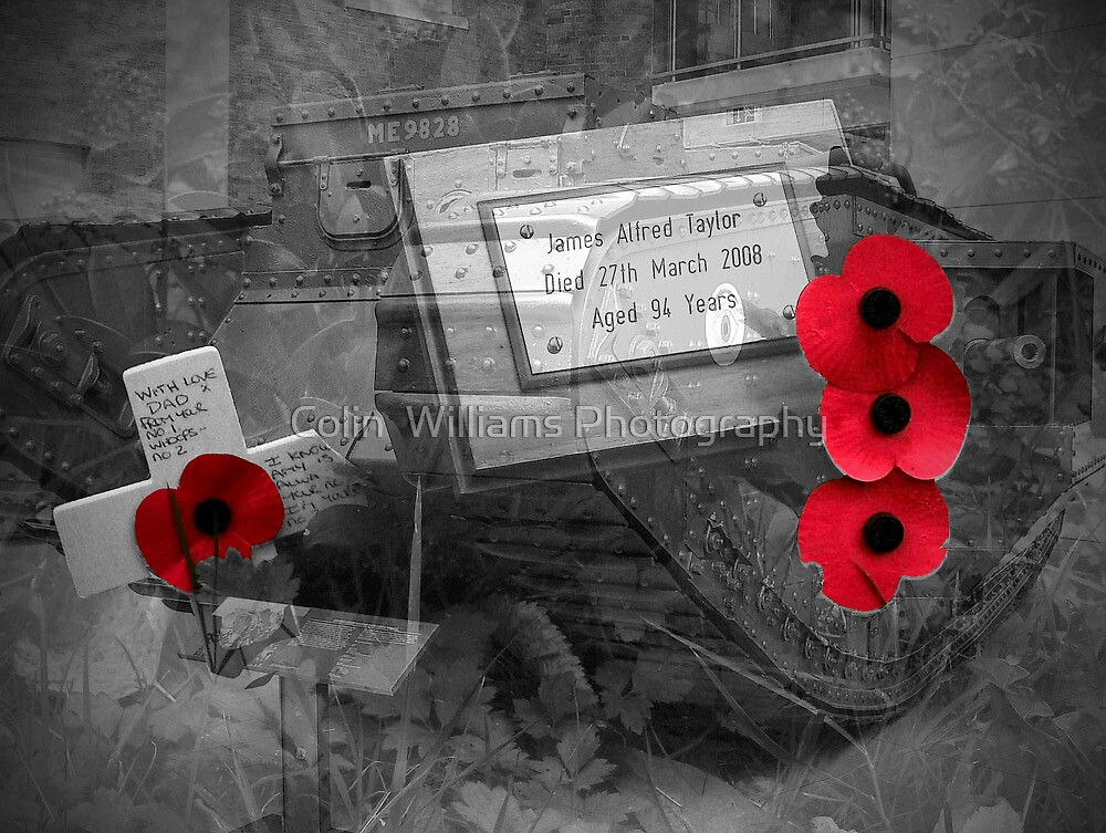 Armistice Day - We Remember Them by Colin  Williams Photography