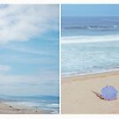 March Diptych 2014 by Lisa  Epp