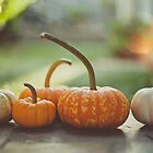 2014 October by Lisa  Epp