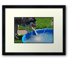 Water Fight!! Framed Print