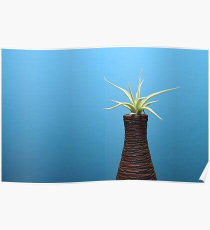 decorative plant Poster