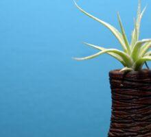 decorative plant Sticker