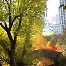 Autumn Paradise by Alberto  DeJesus
