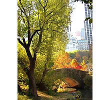 Autumn Paradise Photographic Print