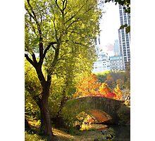 Autumn Paradise Photographic Print