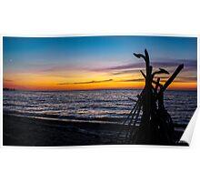 Driftwood Sentry at Sunset Poster