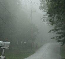 Foggy Lane by PicsbyJody