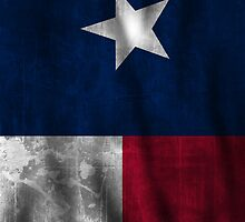 Texas Battle Flag by andrewsloan