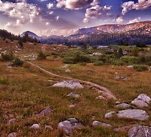 Mountain Trail by Kathy Weaver
