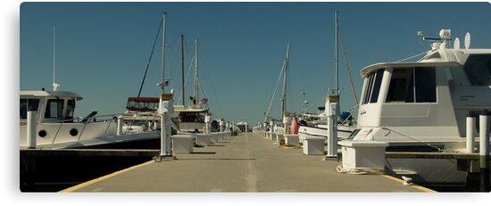 Dockside  by John  Kapusta