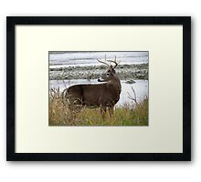 8 Point by the River Framed Print