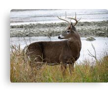 8 Point by the River Canvas Print