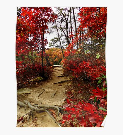 Autumn on the Ridge at Conkle's Hollow Poster